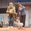 Fup the duck, Kneehigh theatre, Lost Gardens of Heligan