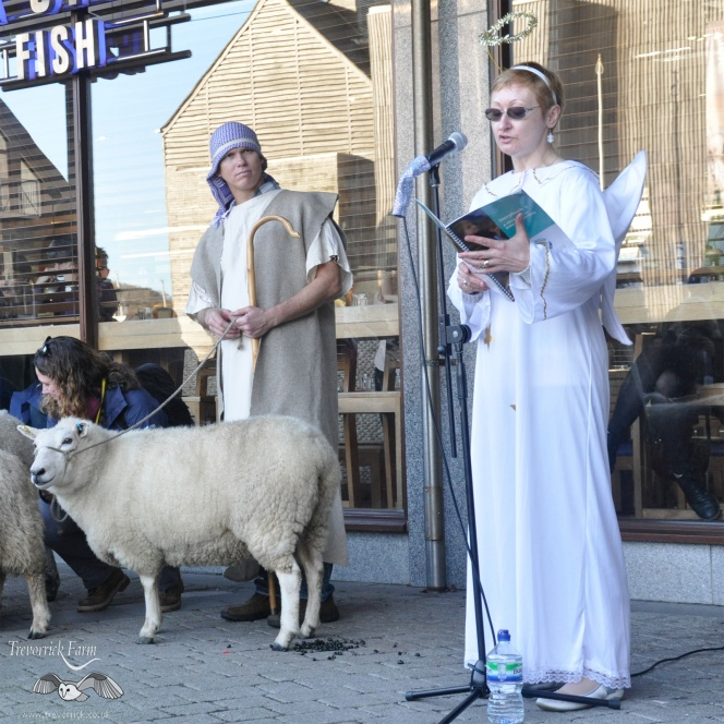 Falmouth Live Nativity 2016